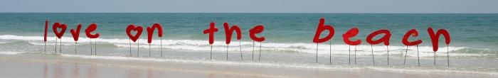 V day on the beach 001