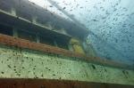 wooden wreck 010