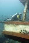 wooden wreck 013
