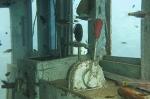 wooden wreck 019