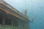 wooden wreck 021