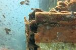 wooden wreck 023