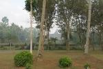 Borobudur 117039