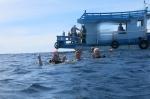 boat blog  014