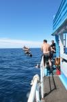 boat blog  042